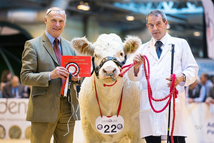 Class 4 Mortimers Lambada presented by Cyril Millar on behalf of Harrison Beale & Owen