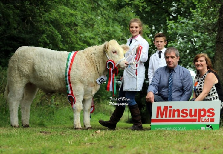 Junior Heifer Champion – Clogher Valley Cattle Breeding Services – Clogher Maudsicecream