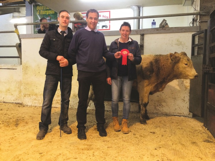 Judge Philip Johnston and Cormac McKervey and Sandra Cochrane, Dungannon Overall Champion