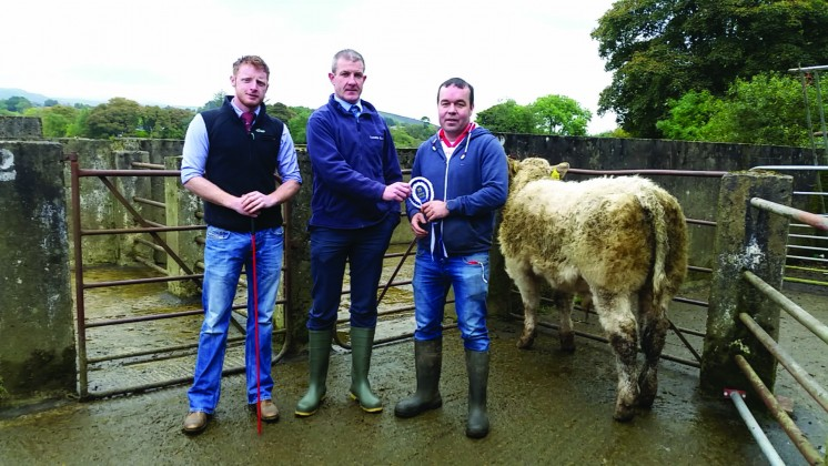 Judge Richie Devine and Ulster Bank Representative Fergus McCrossan congratulate reserve champion Brian McCullagh