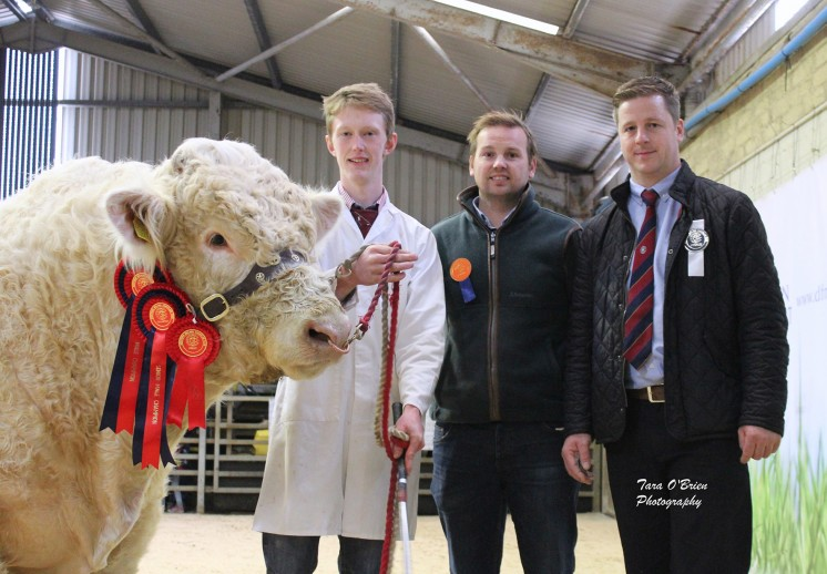 Supreme Champion presentation - Bessiebell Luigi with exhibitor Jack Smyth, Steven Barry from the sponsors Excel Roofing and Cladding and judge Neil McIlwaine