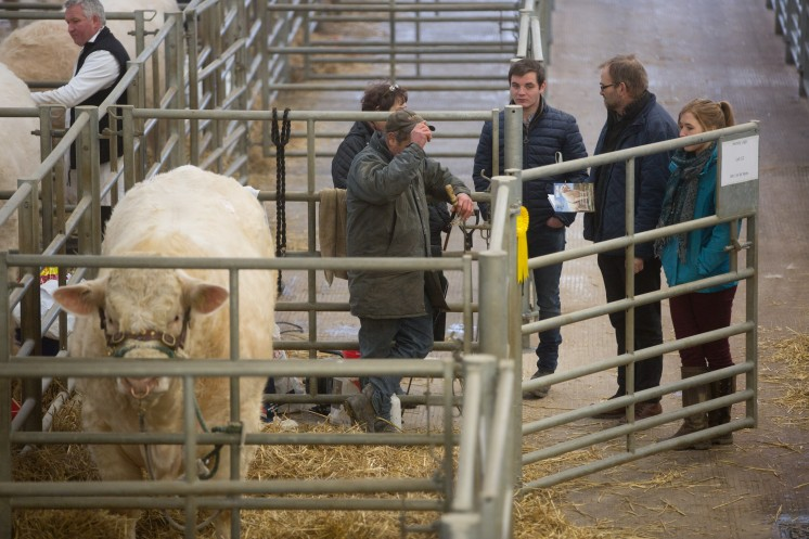 Picture Tim Scrivener 07850 303986 ….covering agriculture in the UK….