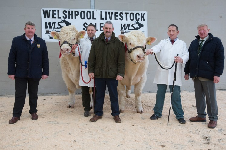 Picture Tim Scrivener 07850 303986….covering agriculture in the UK….