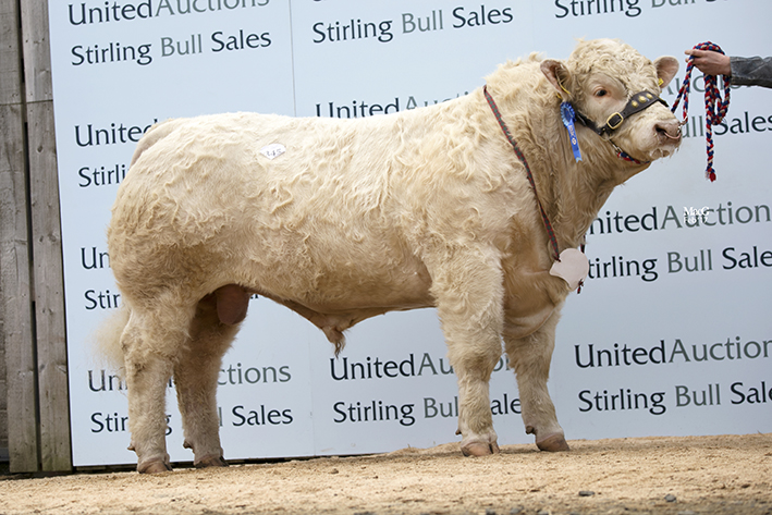Balthayock Lookout - 8,500gns