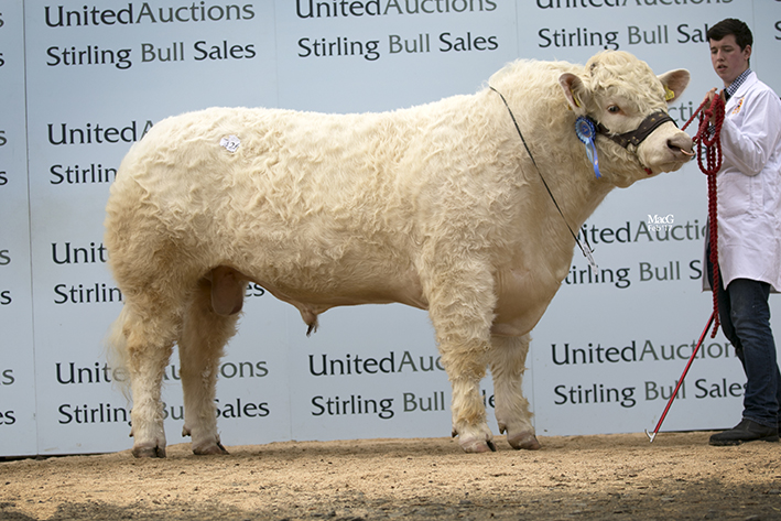 Newhouse Legend - 7,000gns