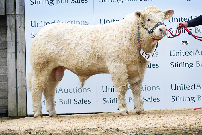 Woodpark Longbow - 16,000gns