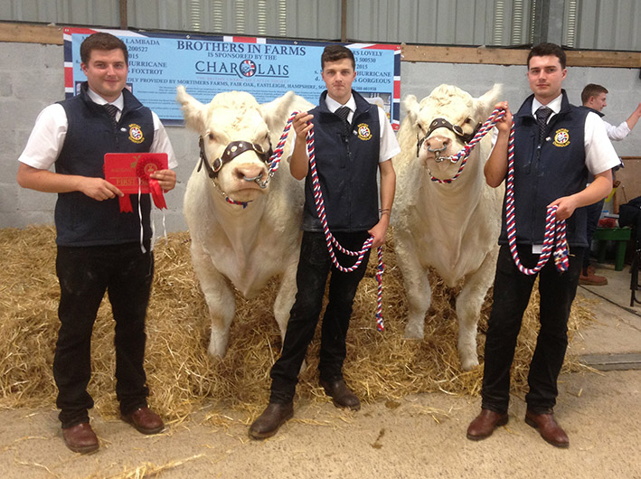 Brothers in Farms Young Show Stars Beef Winners 2017
