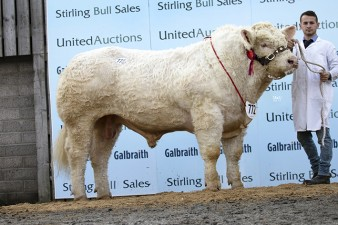 Sportsmans Monarch - 12,000gns